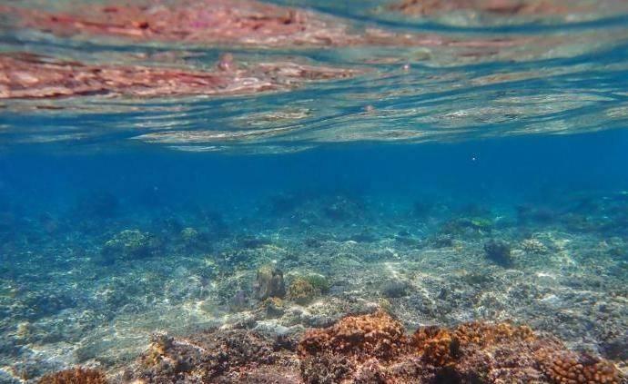 中外科學家聯合發布:2019年是有記錄以來海洋最暖一年